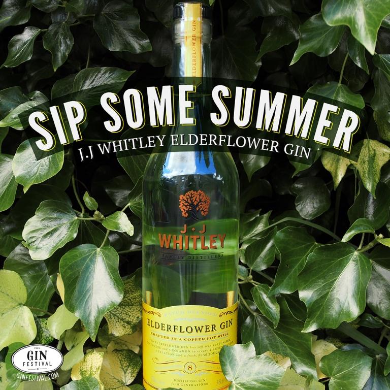 JJ Whitley Elderflower Gin amongst leaves